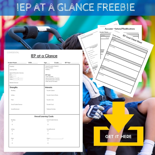 IEP AT A GLANCE FREEBIE DOWNLOAD